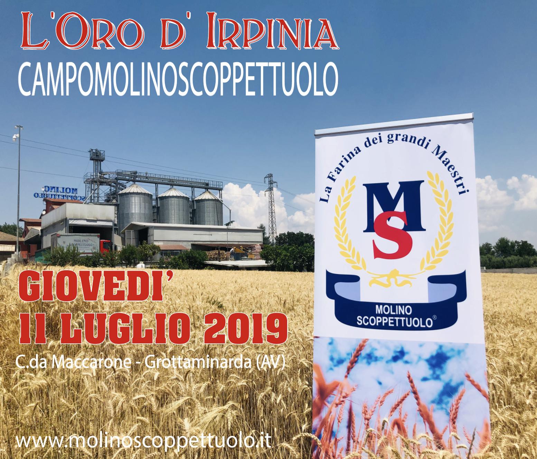 L'ORO D'IRPINIA - SCOPPETTUOLO